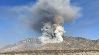 BLM fire.jpeg