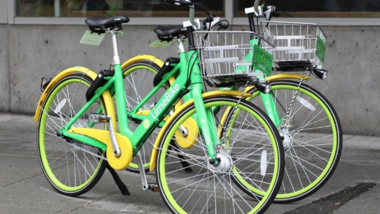 City to launch dockless bikes pilot program after grounding Bird scooters