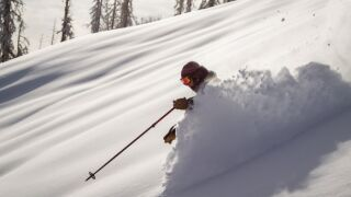 wolf creek ski area skier.jpg