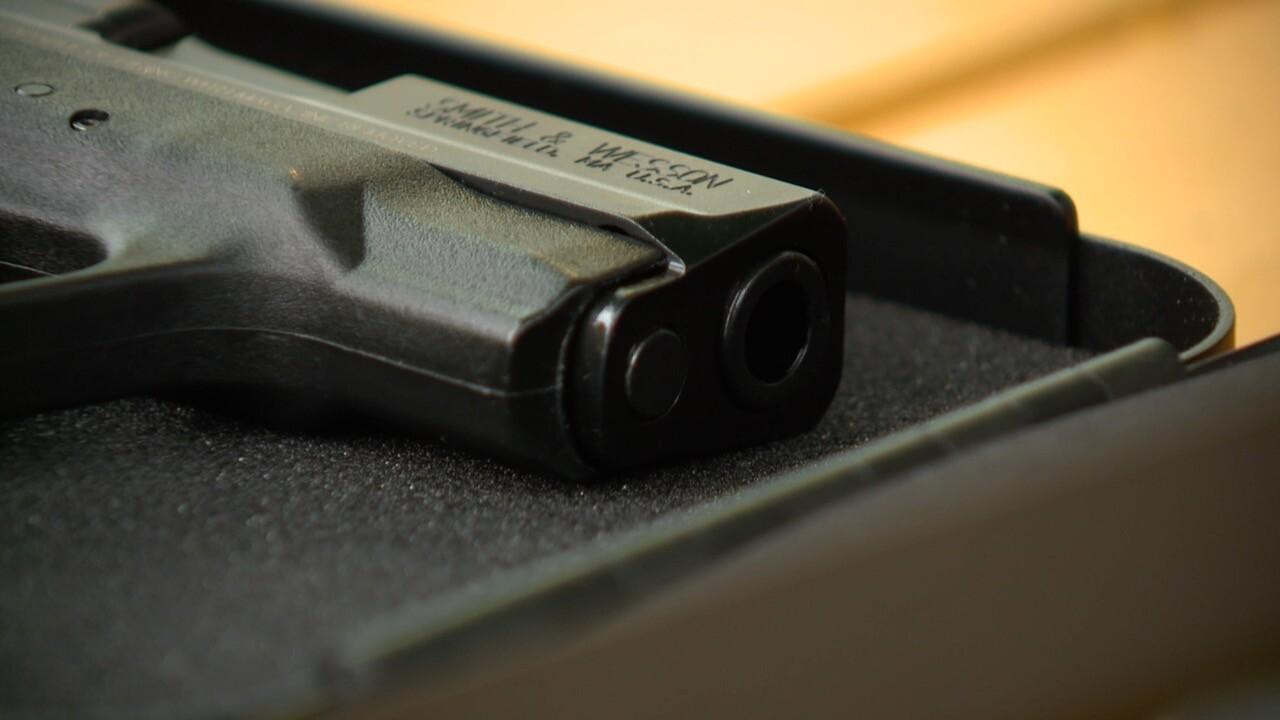 child gun safety 1.jpg