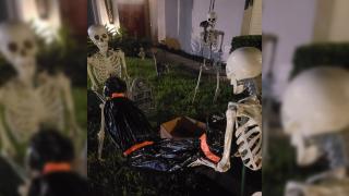 skeleton-display3.png