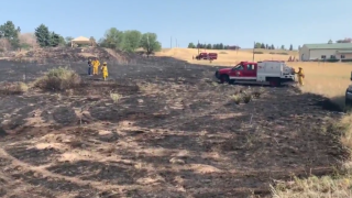 Douglas County wildfire sparked by electrocuted hawk