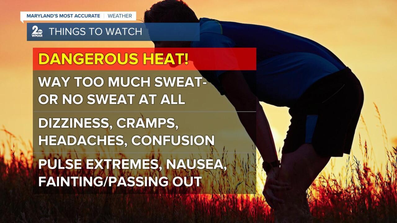 Dangerous Heat.jpg