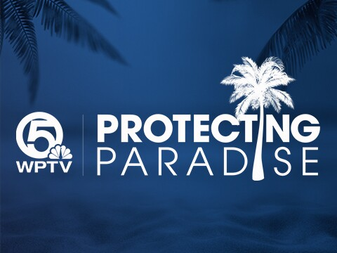 Protecting-Paradise-Profile.jpg