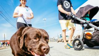 Richmond SPCA dog jog.png