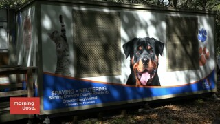 Paws & Claws: Portable Spay/Neuter Unit For Pets