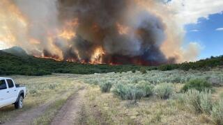 Pine Gulch Fire near Grand Junction now 1,500 acres, 'several' structures threatened