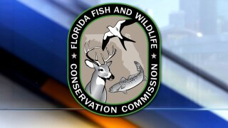 WPTV-FWC-logo-Florida-Fish-and-Wildlife-Conservation-Commission.jpg