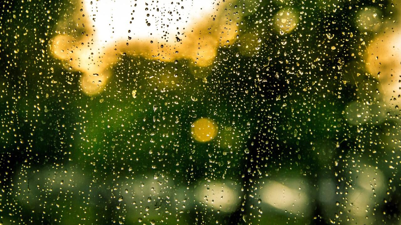 rain-932275_1920.jpg
