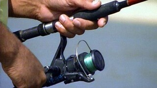 New Florida fishing rules on snook and redfish due to red tide