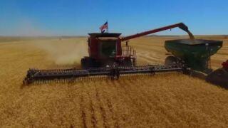 Montana Ag Network: Montana Farmer's Union sets priorities