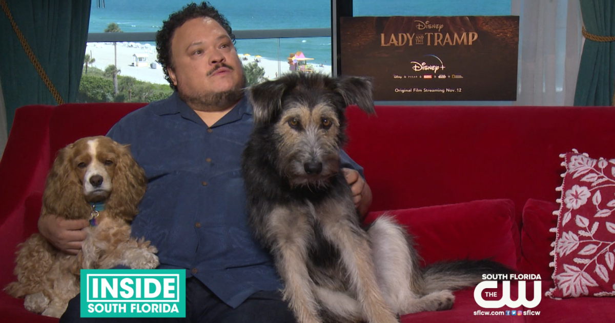 Disney Classic Lady And The Tramp Comes Back To Life As A New Live Action Film