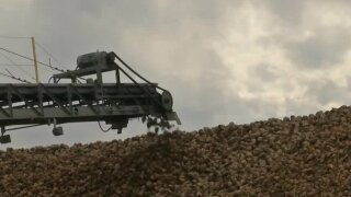 Montana Ag Network: Sugar growers wrap up another successful harvest