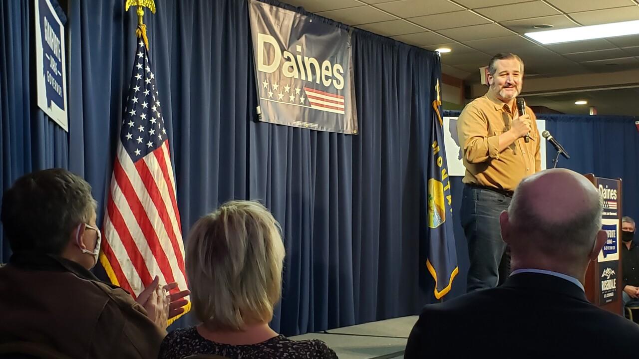 Ted Cruz Steve Daines