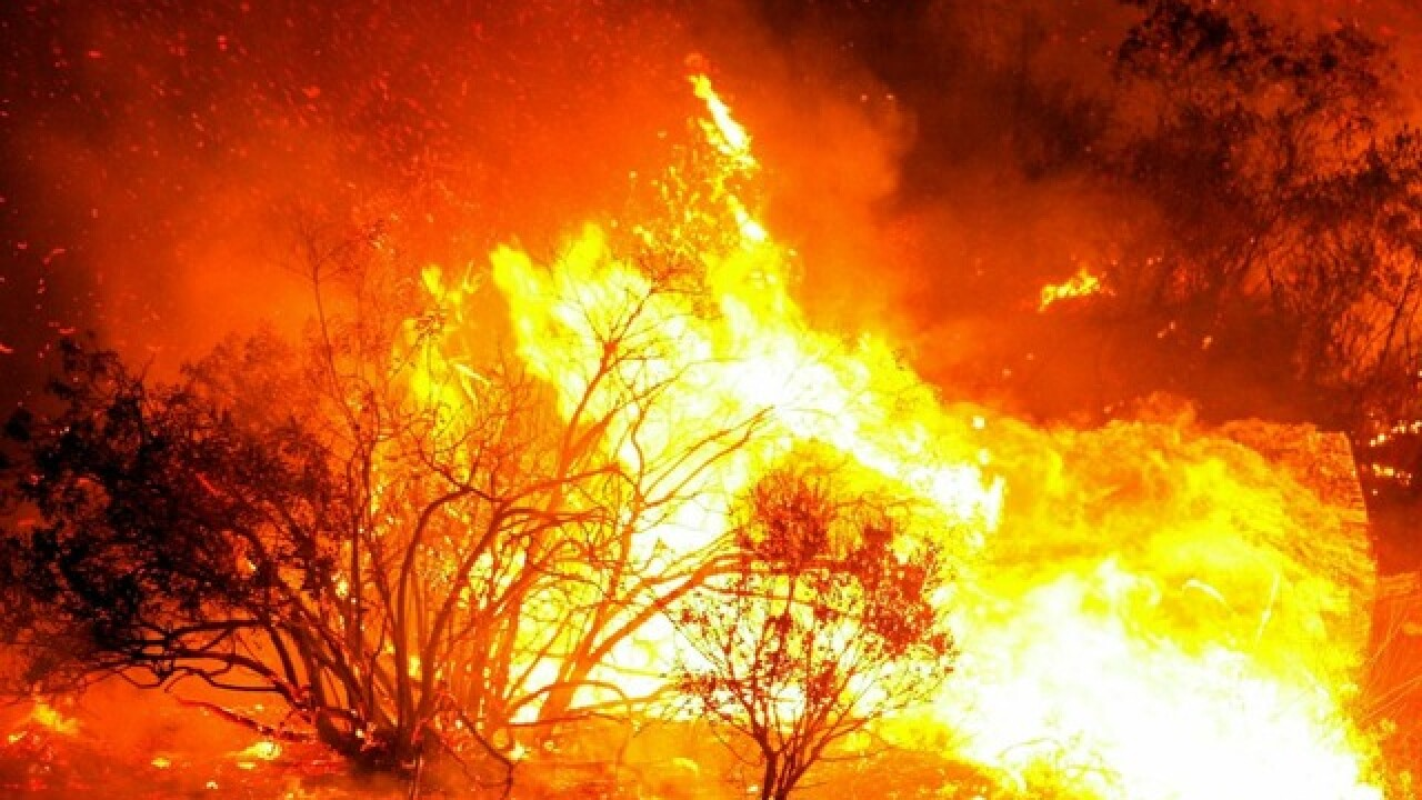 Resource List: Are you prepared for a San Diego wildfire?