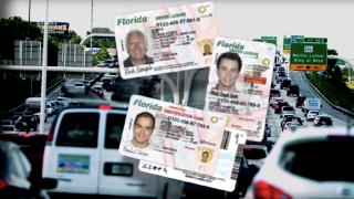 florida-drivers-license.png