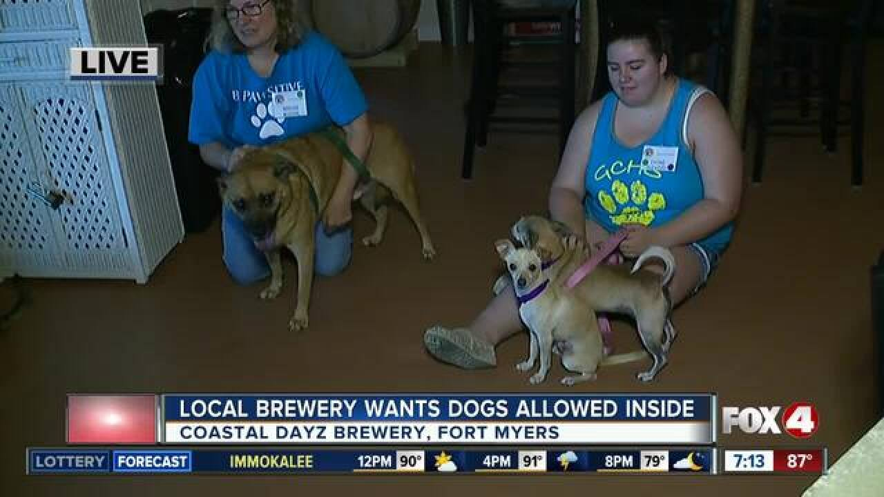 Should dogs be allowed inside Florida breweries?