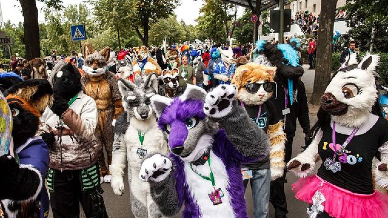 Amid Allegations Of Unpaid Taxes Neo Nazism And Sex Offender Denver Furry Convention Canceled
