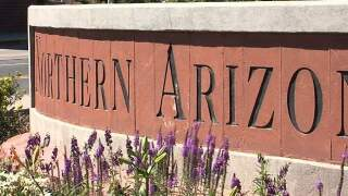 Northern Arizona University professor indicted for stalking student, firefighters