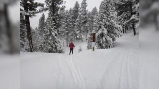 Last Chance Nordic Ski Club sees drop in membership