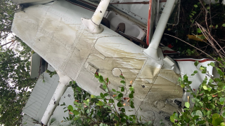plane crash.PNG