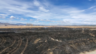 Wind pushes controlled fire onto home property