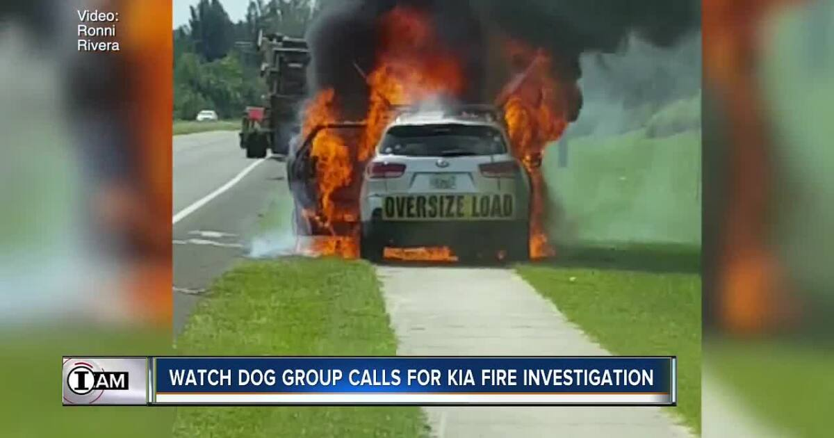 Number of Kia fires labeled as alarming by auto safety watch dog