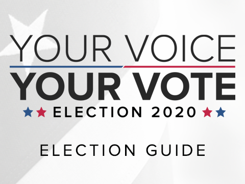 Election 2020 Guide