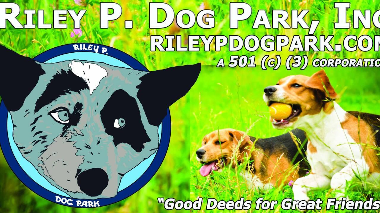 riley p dog park.jpg