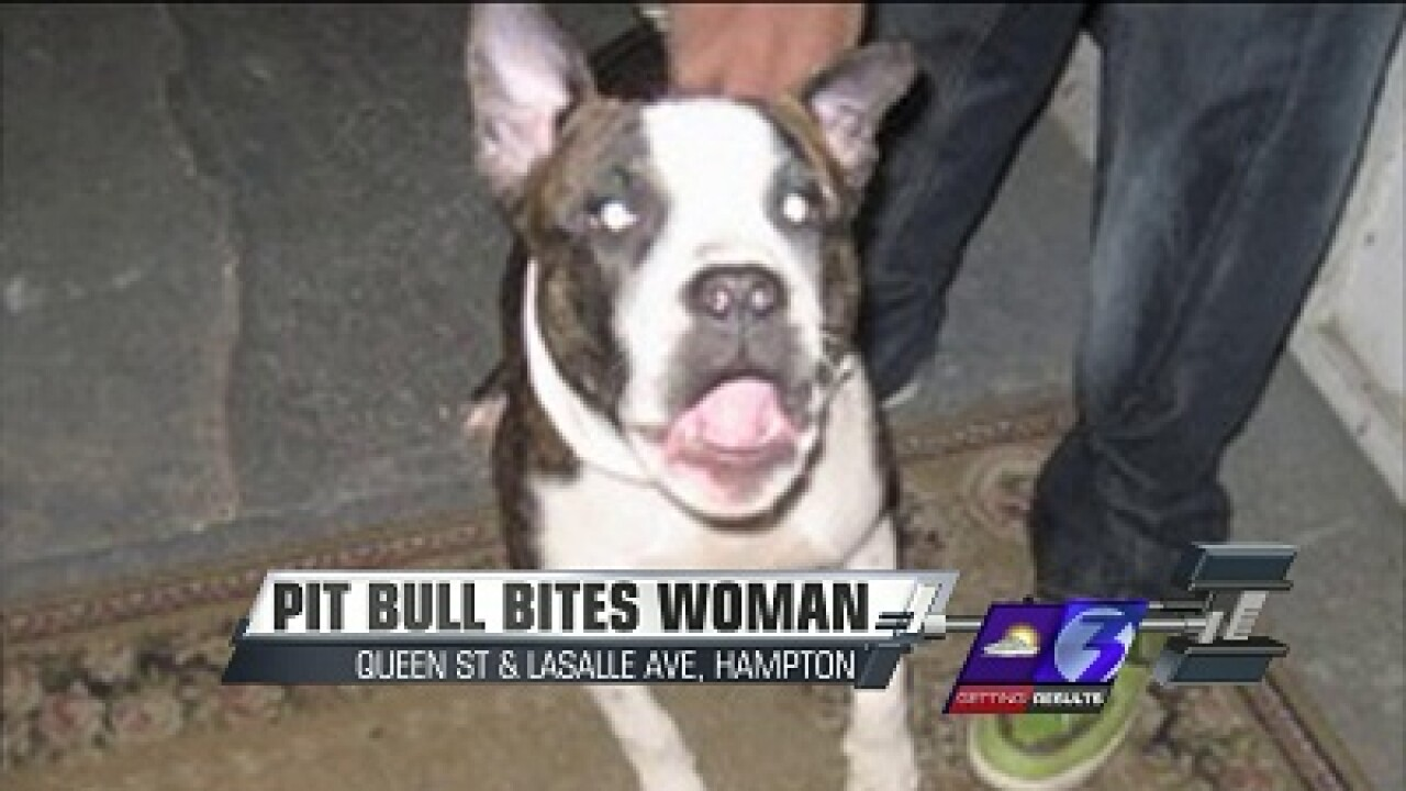 Dog attacks woman in Hampton