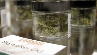 Sticker shock coming with California's new pot market