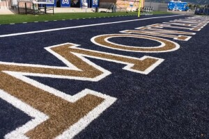 Montana State University's 2008 turf was made with defective fiber