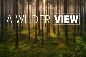 A Wilder View