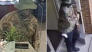harding pike robber.PNG