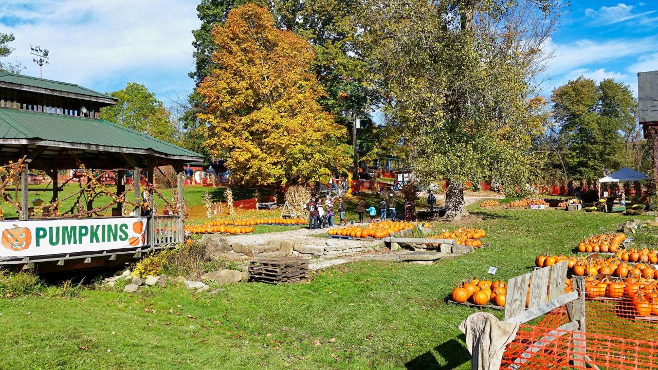 Heritage Farms.jpeg