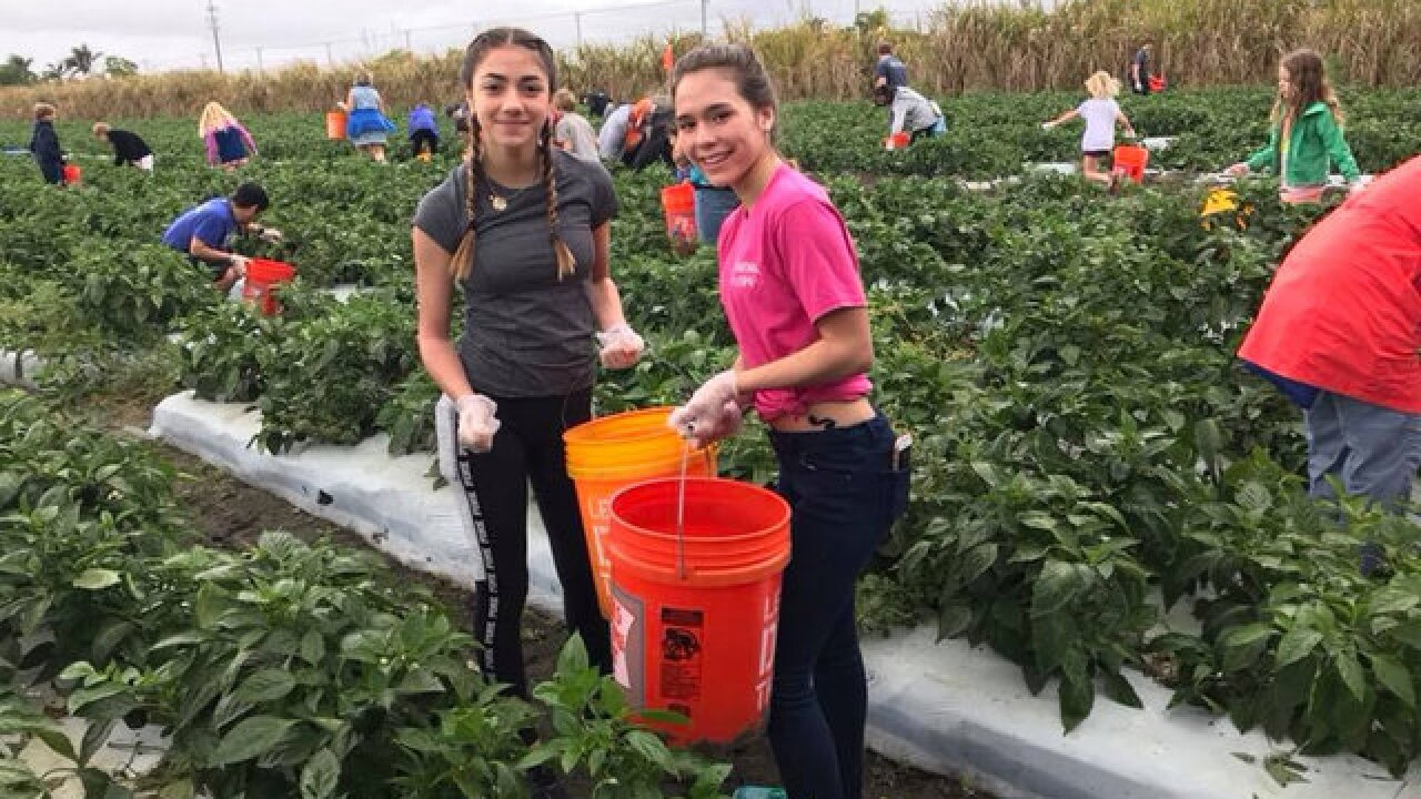 Local students help prevent food waste