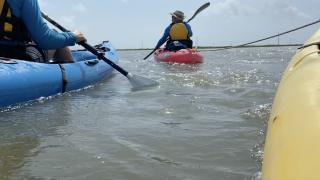 Nature Trails Kayaking