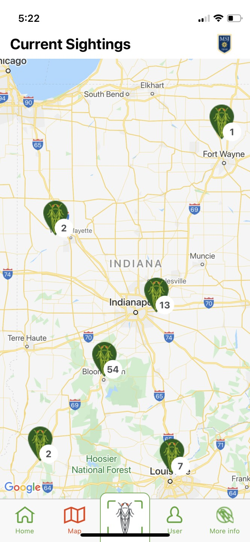 Cicada Safari map.jpg
