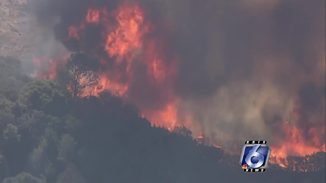 """Glass Fire"" scorching Napa County, Calif."