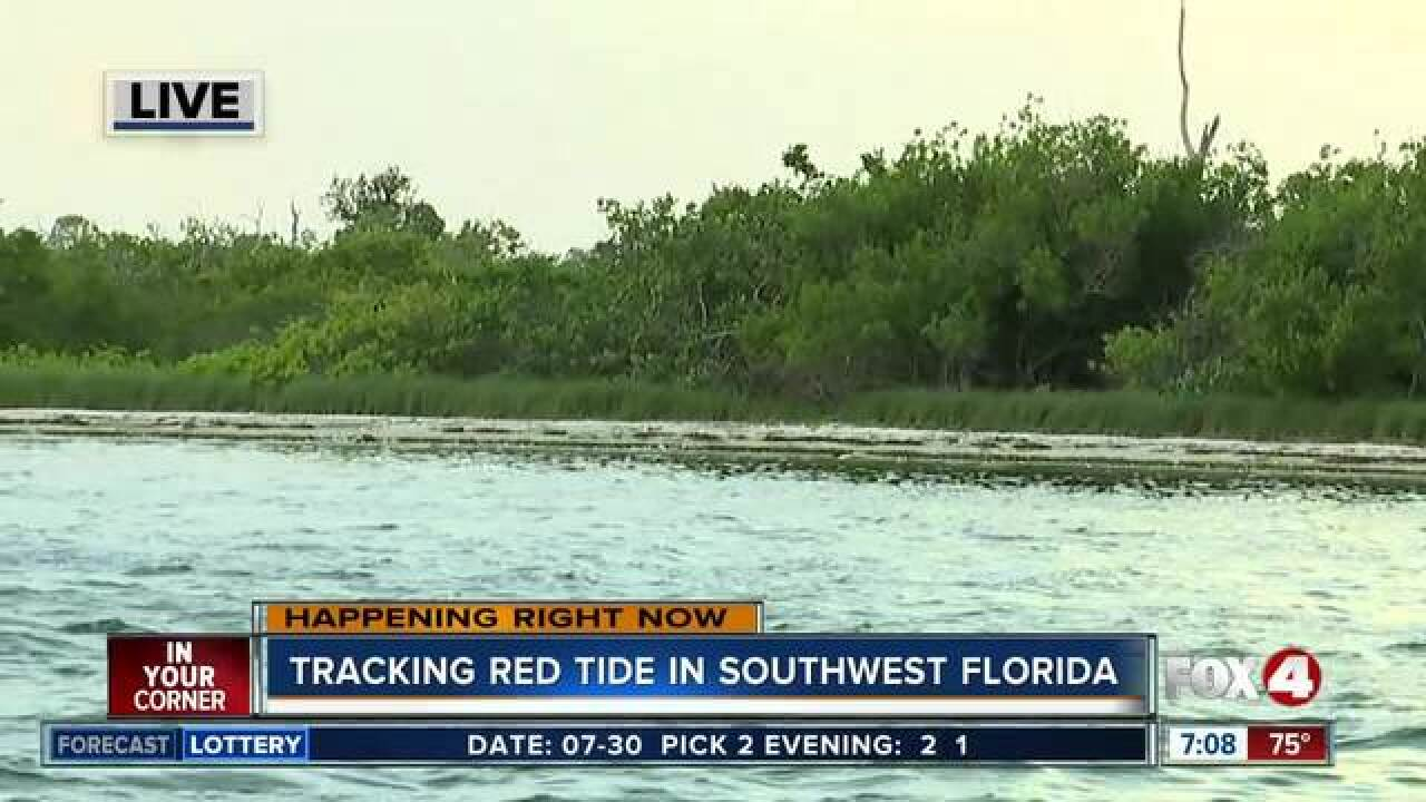 Tracking Red Tide in Southwest Florida