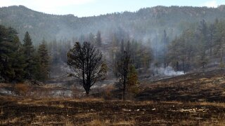 Elk Fire in Larimer County