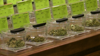 Lompoc cannabis shop welcomes competition