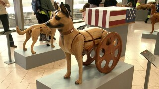 Wounded Warrior Dogs