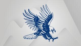 Dickinson State logo