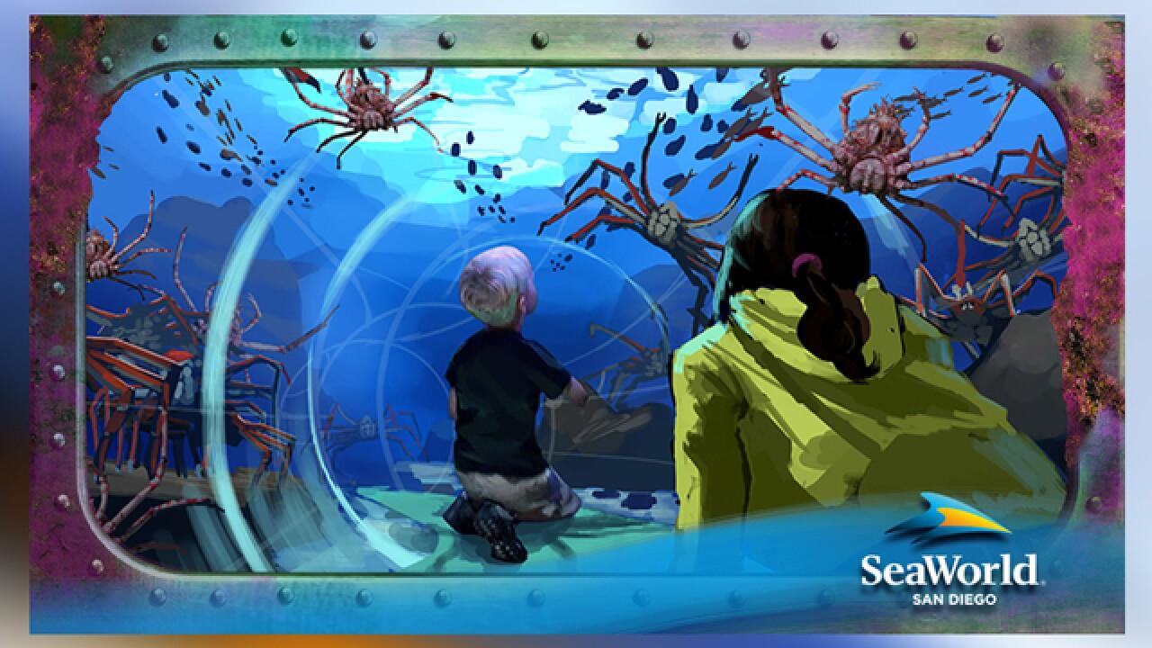SeaWorld announces 'Ocean Explorer' attraction