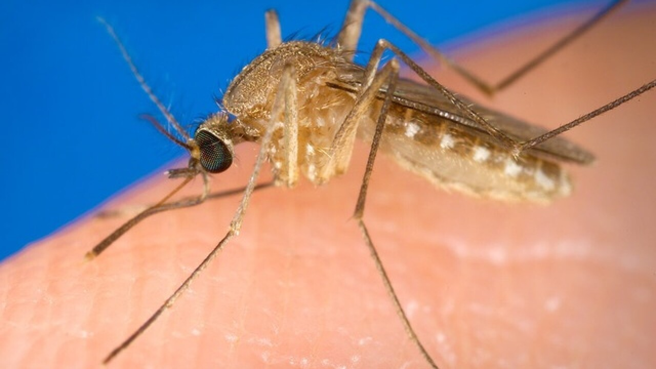 First human case of West Nile Virus in Brown County