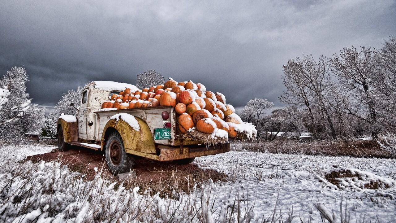 Pumpkins in old pickup_Scott Wilson.jpg