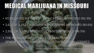 Racial Inequity Marijuana Licenses