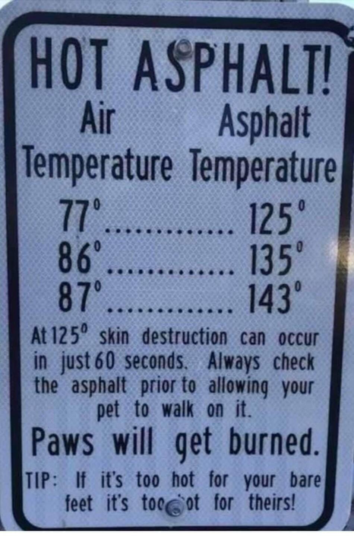 hot asphalt dogs sign