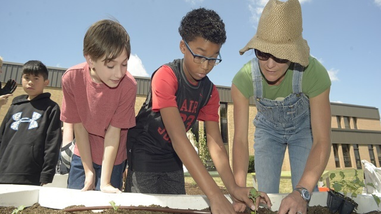 School gardens give students hands-on experience